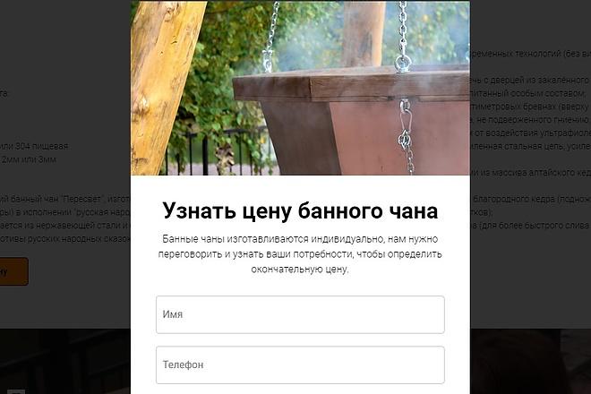 Копирование Landing Page 40 - kwork.ru