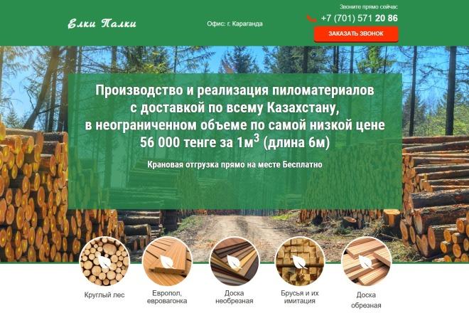 Копирование Landing Page 7 - kwork.ru