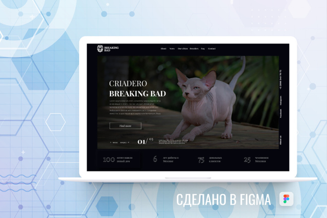 Уникальный дизайн сайта для вас. Интернет магазины и другие сайты 76 - kwork.ru