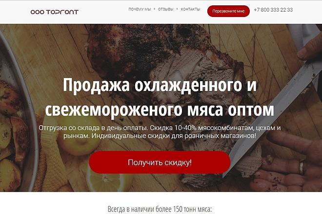 Скопирую Landing Page, Одностраничный сайт 55 - kwork.ru