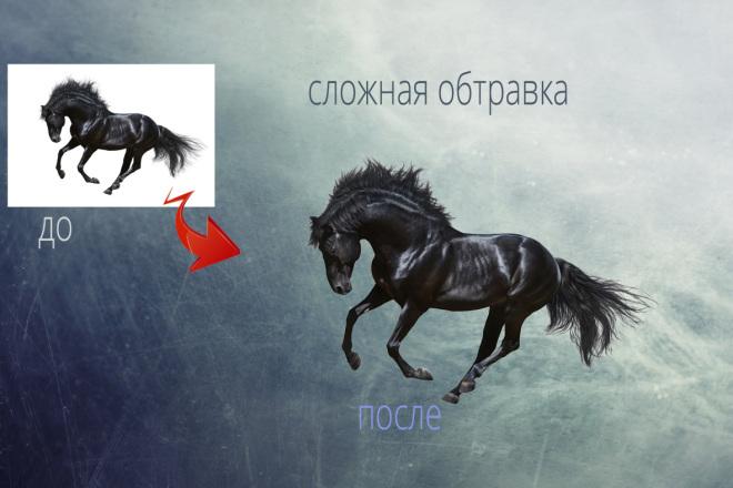Удаление фона, обтравка, отделение фона 9 - kwork.ru