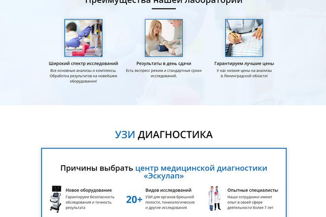 Создам продающий Landing Page под ключ 16 - kwork.ru