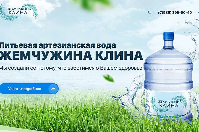 Копирование лендингов, страниц сайта, отдельных блоков 7 - kwork.ru