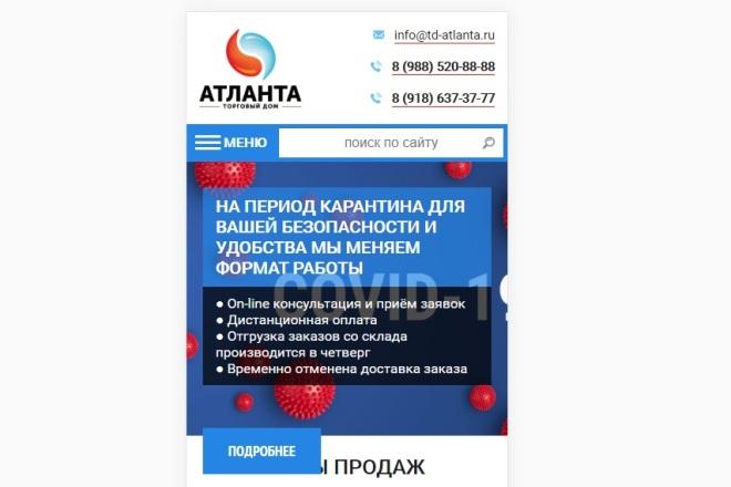 Адаптация сайта под мобильные устройства 3 - kwork.ru