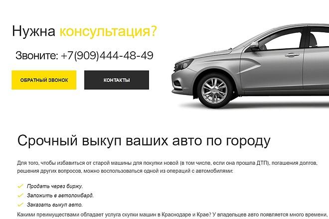 Создам лендинг на вордпресс 41 - kwork.ru