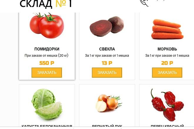 Создам лендинг на вордпресс 40 - kwork.ru
