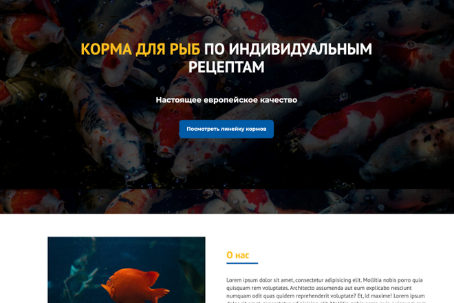 Сайт под ключ. Landing Page. Backend 17 - kwork.ru
