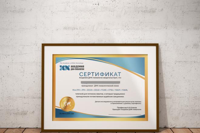 Дизайн Диплома, Сертификата, Благодарности, Грамоты 6 - kwork.ru
