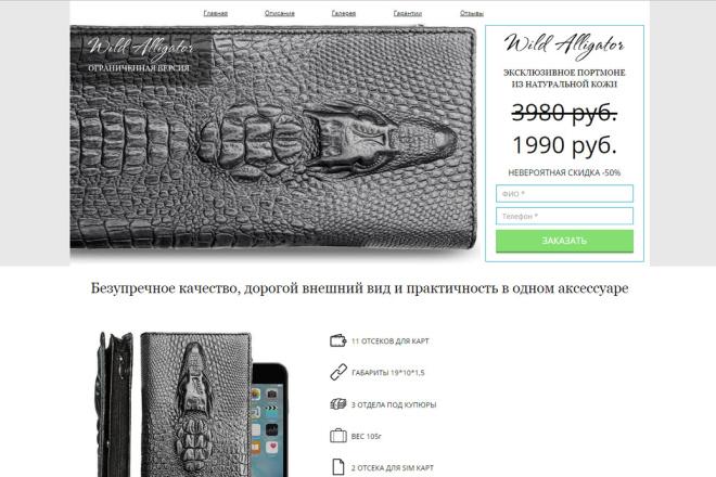 Скопирую Landing Page, Одностраничный сайт 101 - kwork.ru