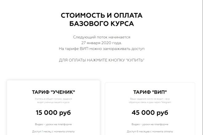 Качественная копия Landing Page на Tilda 13 - kwork.ru