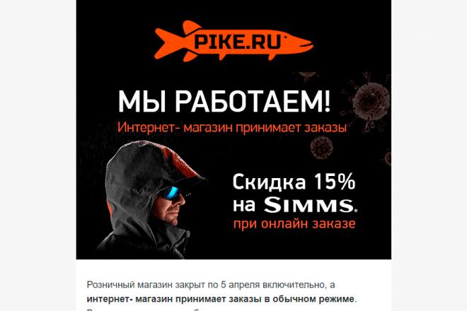 Создание и вёрстка HTML письма для рассылки 74 - kwork.ru