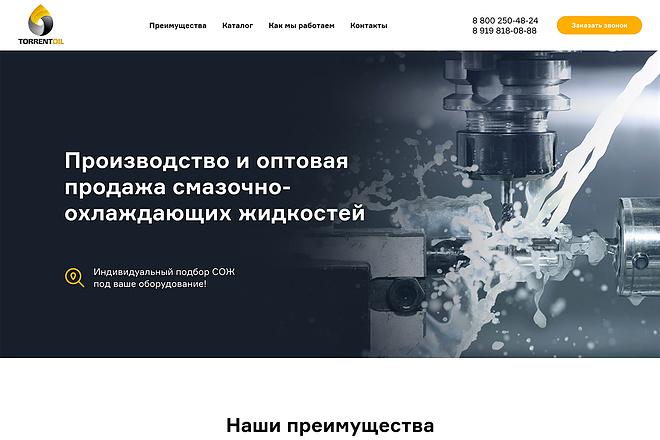 Лендинг на Tilda 4 - kwork.ru
