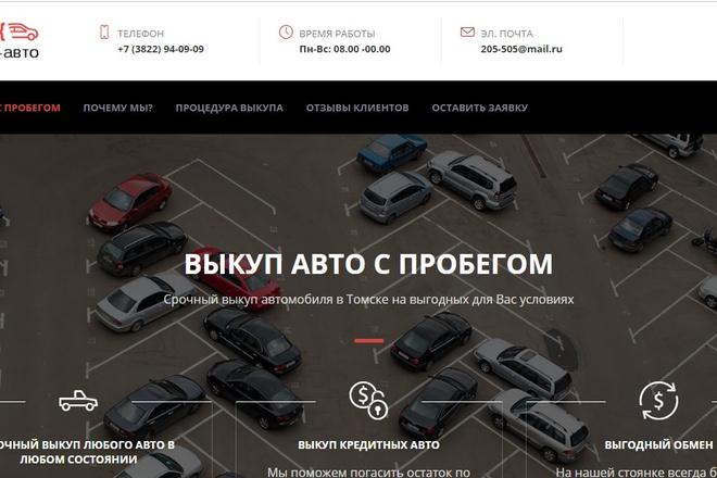 Качественная копия лендинга с установкой панели редактора 84 - kwork.ru