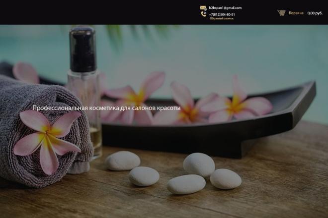 Дизайн страницы сайта в PSD 13 - kwork.ru