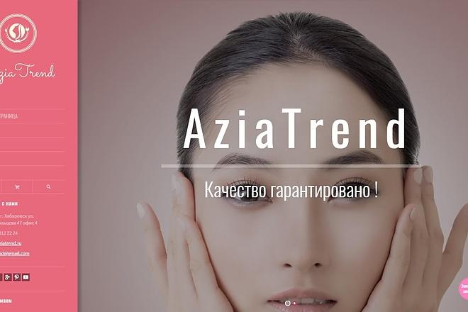 Создание проф. адаптивного интернет магазина на платном шаблоне WP 2 - kwork.ru