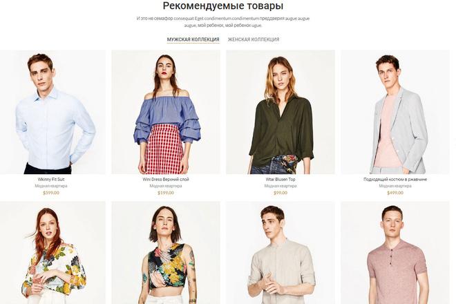 Профессиональный интернет-магазин под ключ премиум уровня 20 - kwork.ru