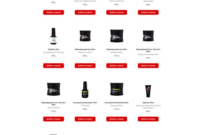 Перенос, экспорт, копирование сайта с Tilda на ваш хостинг 18 - kwork.ru