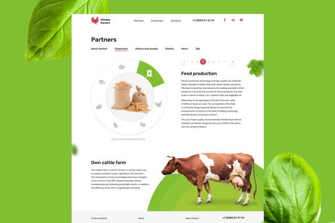 Веб дизайн страницы сайта на Тильде 9 - kwork.ru