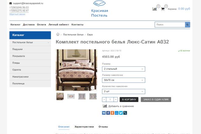 Профессионально создам интернет-магазин на insales + 20 дней бесплатно 52 - kwork.ru