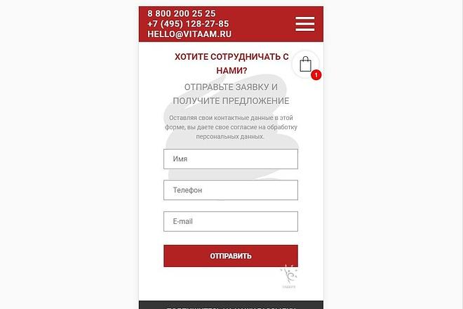 Верстка страницы сайта по макету 1 - kwork.ru