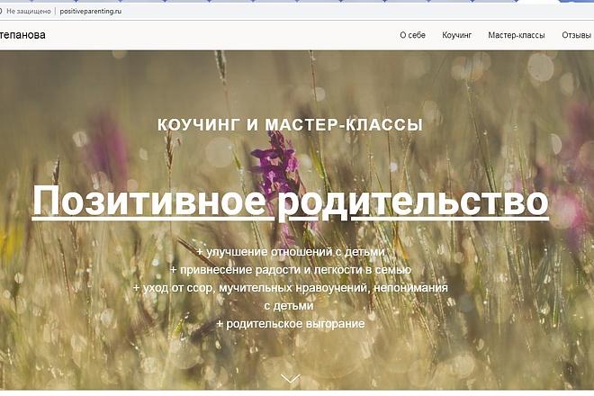 Создам лендинги, сайты, CMS 6 - kwork.ru