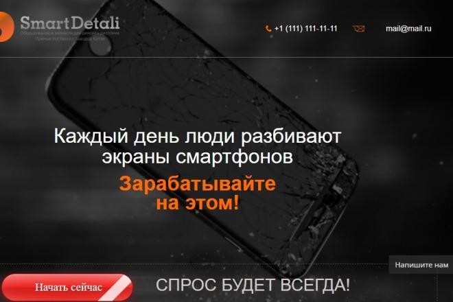 Делаю копии landing page 44 - kwork.ru