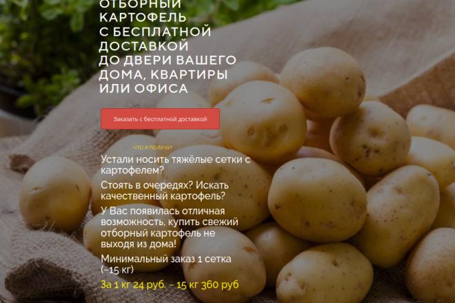 Скопирую страницу любой landing page с установкой панели управления 78 - kwork.ru