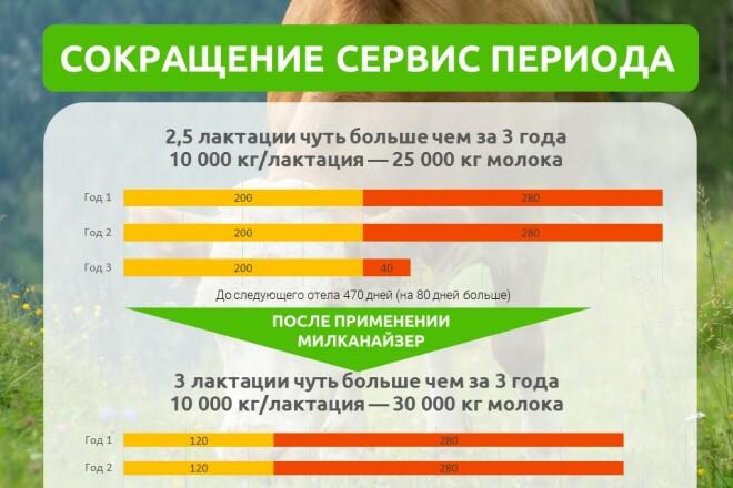 Разработка стильных презентаций 12 - kwork.ru