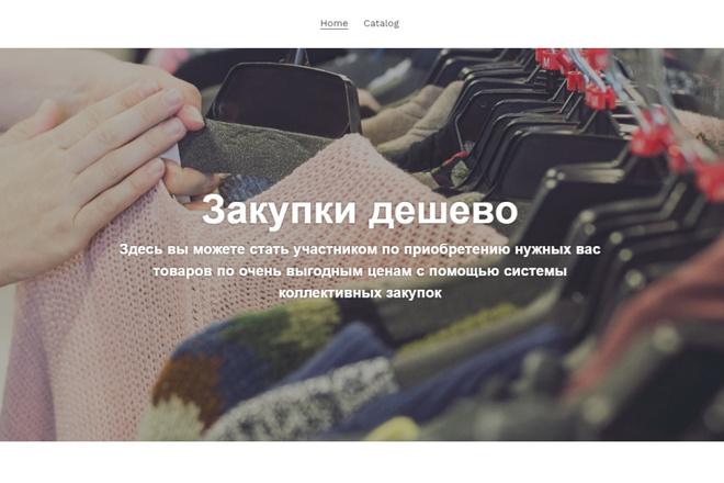 Создам интернет-магазин на Shopify без ежемесячной оплаты 11 - kwork.ru