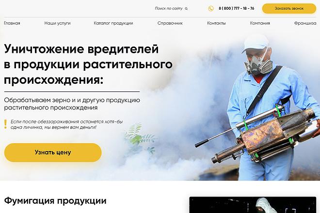 Дизайн страницы сайта 80 - kwork.ru