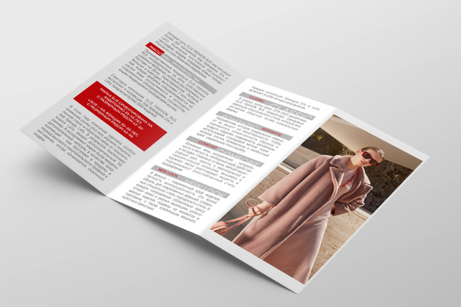 Дизайн брошюры, буклета 20 - kwork.ru