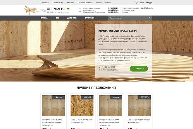 Дизайн страницы Landing Page - Профессионально 53 - kwork.ru