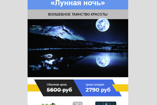 Качественная копия лендинга с установкой панели редактора 34 - kwork.ru