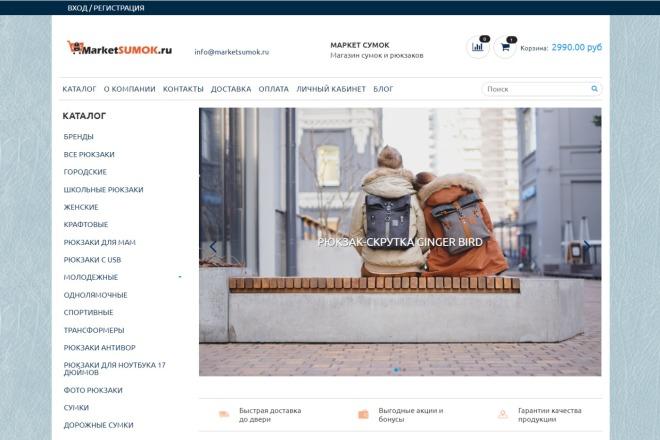 Профессионально создам интернет-магазин на insales + 20 дней бесплатно 18 - kwork.ru