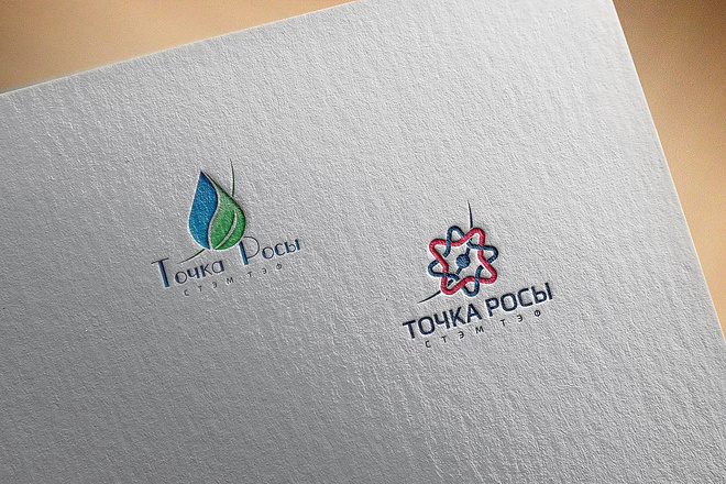 Создам 2 варианта логотипа + исходник 99 - kwork.ru