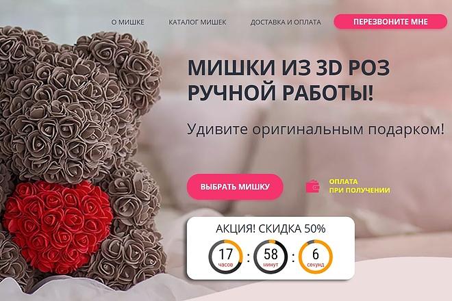 Сделаю копию сайта, Landing page, одностраничник, продающий сайт 1 - kwork.ru