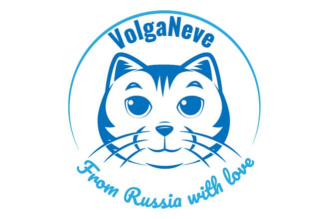 Разработаю логотип в 3 вариантах + визуализация в подарок 22 - kwork.ru