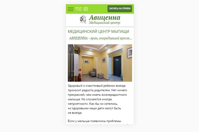 Адаптация сайта под мобильные устройства 71 - kwork.ru