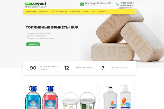 Скопирую почти любой сайт, landing page под ключ с админ панелью 35 - kwork.ru