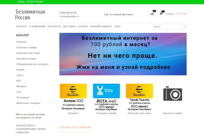 Профессионально создам интернет-магазин на insales + 20 дней бесплатно 15 - kwork.ru