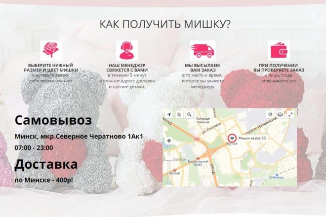 Сделаю копию Landing Page c настройкой 5 - kwork.ru