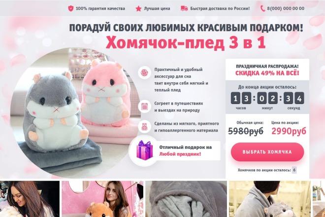 Копии двух лендингов из каталогов товарных CPA за 500 рублей 4 - kwork.ru