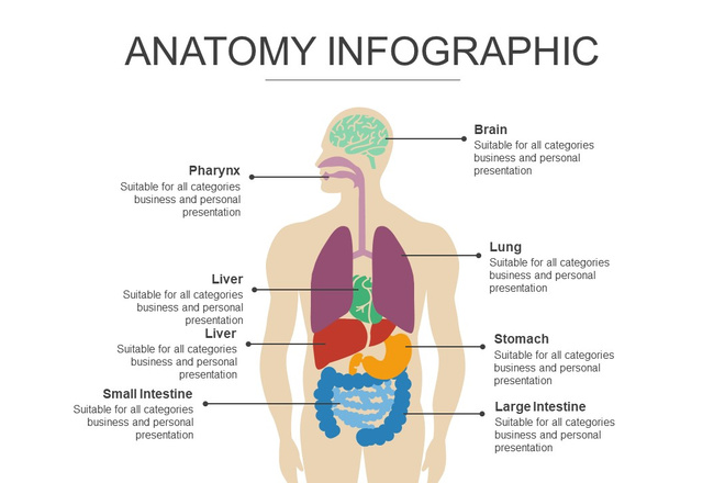 Инфографика на медицинскую тему. Шаблоны PowerPoint 3 - kwork.ru