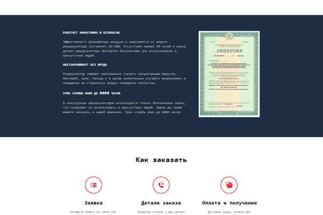 Создание современного лендинга на конструкторе Тильда 13 - kwork.ru