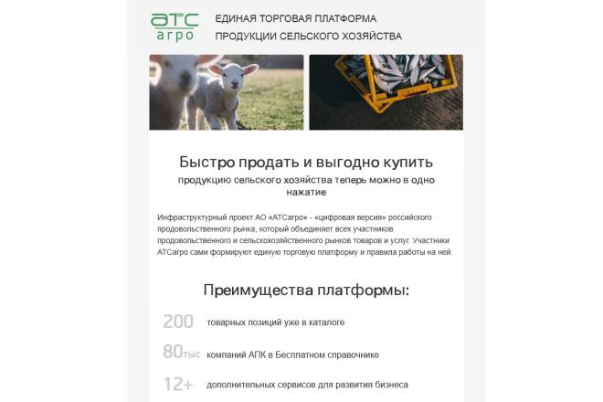 Создание и вёрстка HTML письма для рассылки 89 - kwork.ru
