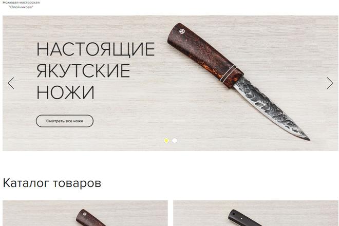 Адаптивная верстка сайтов 5 - kwork.ru