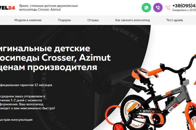Качественная копия лендинга с установкой панели редактора 58 - kwork.ru