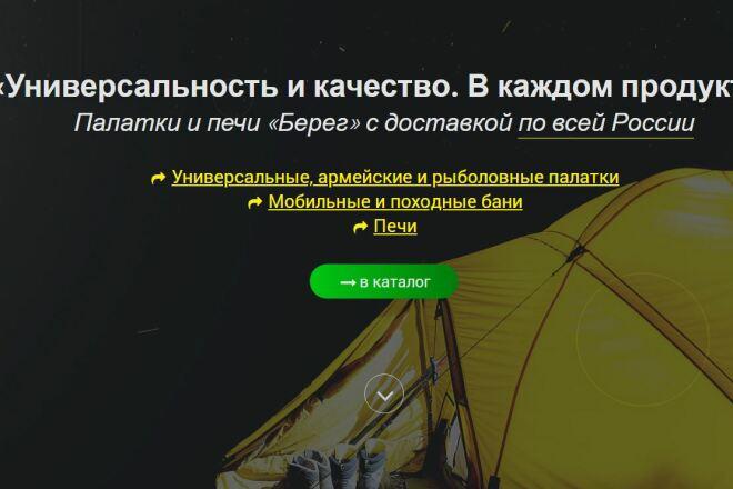 Скопировать Landing page, одностраничный сайт, посадочную страницу 65 - kwork.ru
