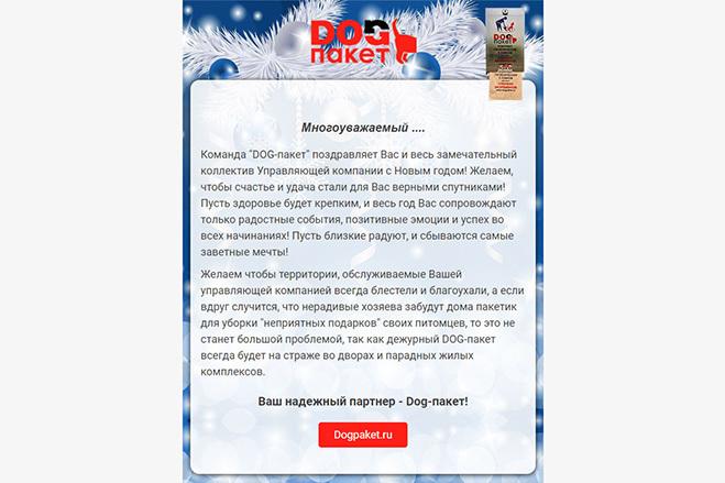 Дизайн и верстка адаптивного html письма для e-mail рассылки 45 - kwork.ru