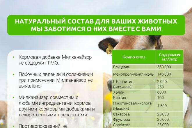 Разработка стильных презентаций 13 - kwork.ru